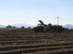 A tractor and potato bulker in a potato field near Gold Dust's campus in Malin, OR.